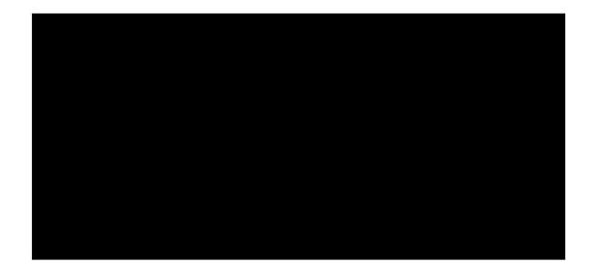 Love The Chans Logo